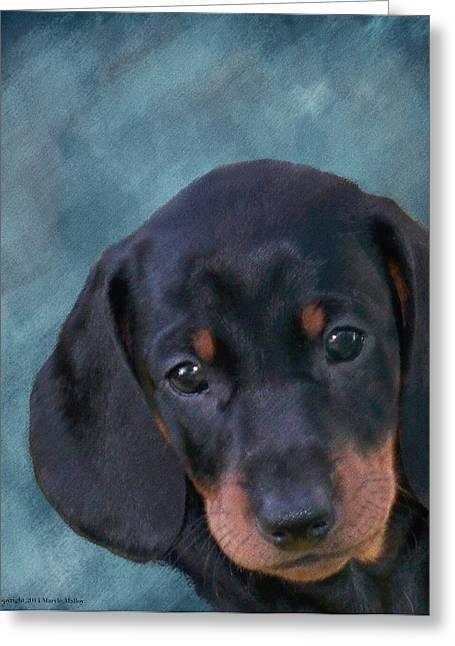 Dachshund Puppy Digital Art Greeting Cards - Manny Greeting Card by Maryle Malloy