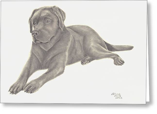 Chocolate Lab Greeting Cards - Mans Best Friend Greeting Card by Patricia Hiltz