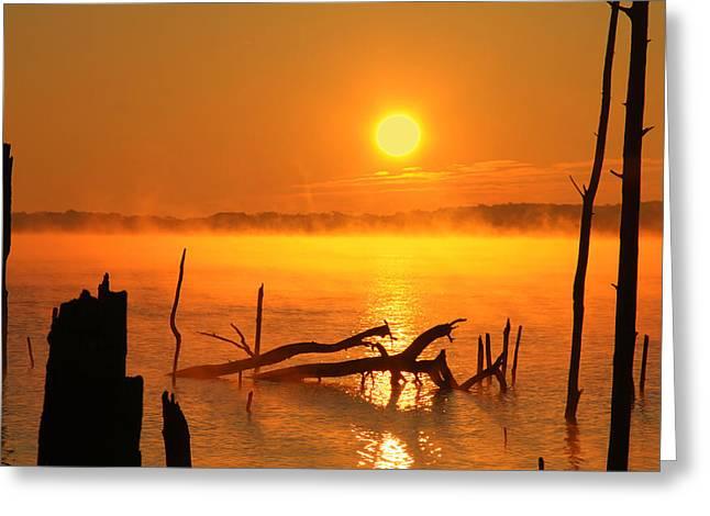 Manasquan Reservoir Greeting Cards - Mantis Sunrise Greeting Card by Roger Becker
