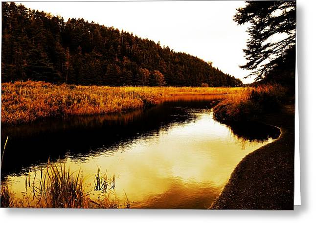 Historical Pictures Greeting Cards - Manuels River Greeting Card by Zinvolle Art