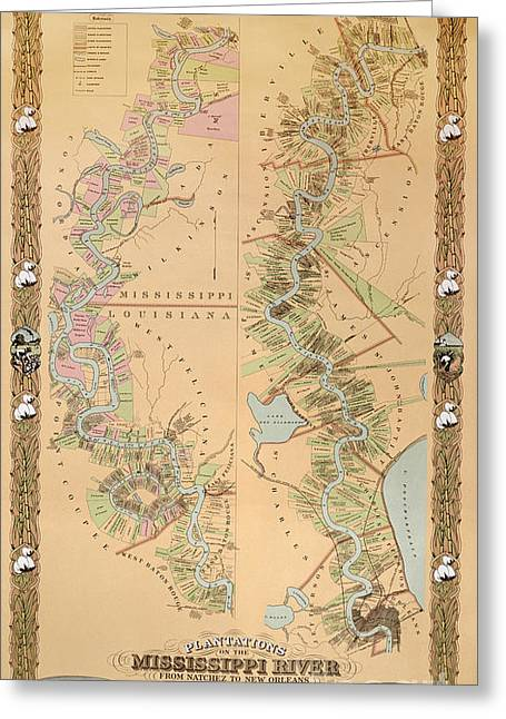 Historic Drawings Greeting Cards - Map depicting plantations on the Mississippi River from Natchez to New Orleans Greeting Card by American School