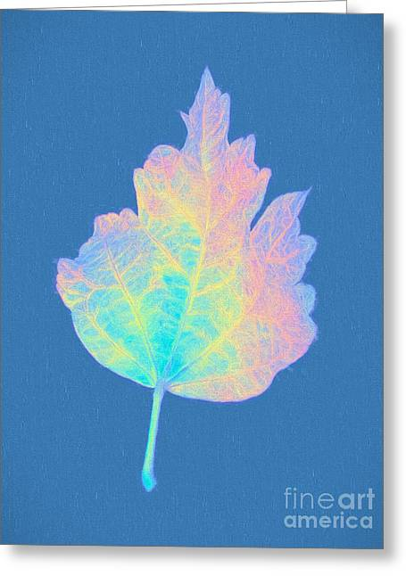 Subtle Colors Greeting Cards - Maple Leaf Greeting Card by Vizual Studio
