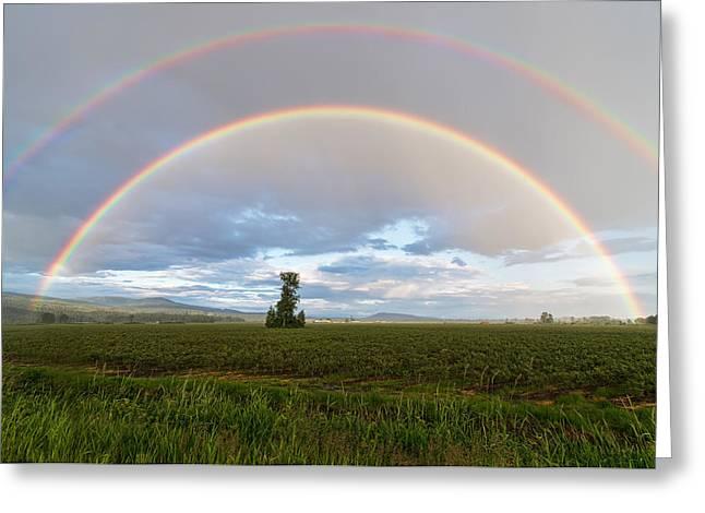 Double Rainbow Greeting Cards - Maple Ridge Rainbow Greeting Card by James Wheeler