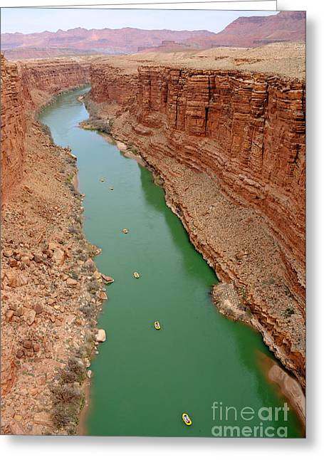 Rafters Greeting Cards - Marble Canyon - Glen Canyon National Recreation Area Greeting Card by Gary Whitton