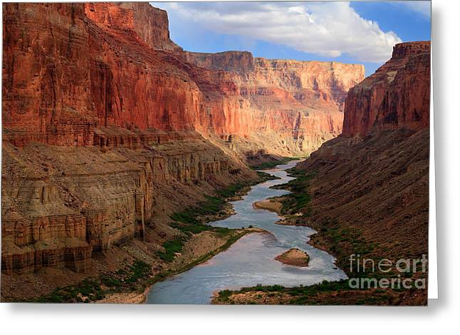 Rapids Photographs Greeting Cards - Marble Canyon Greeting Card by Inge Johnsson