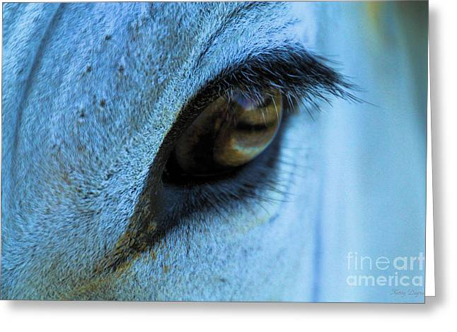 Marble Eye Greeting Cards - Marble Eye Greeting Card by Karry Degruise