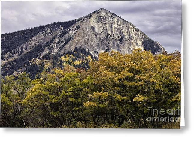 Prospect Place Greeting Cards - Marcellina Mountain Greeting Card by Stuart Gordon