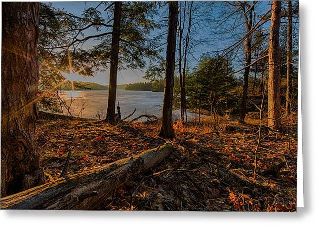 Redwoods Greeting Cards - March sunrise at Millsite Lake Greeting Card by Everet Regal