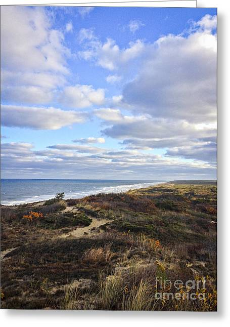 Marconi Beach Greeting Cards - Marconi Cape Cod Cliffs Greeting Card by Lauren Kunkler