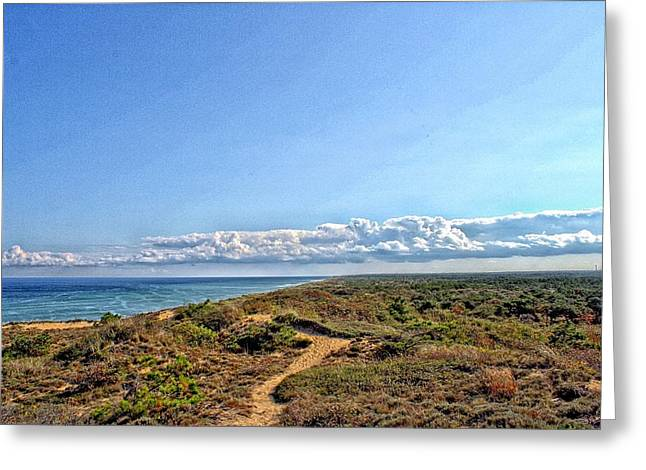 Marconi Beach Greeting Cards - Marconi Station View Cape Cod Greeting Card by Constantine Gregory
