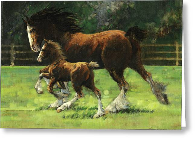 Busch Greeting Cards - Clydesdale Mare and Colt Greeting Card by Don  Langeneckert
