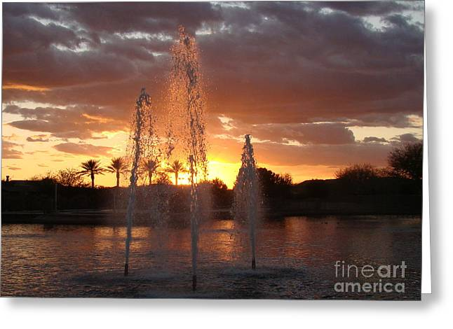 Sunset Greeting Cards Greeting Cards - Maricopa Delight Greeting Card by Beverly Guilliams