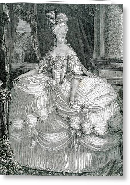 Marie Antoinette (1755-1793 Greeting Card by Prisma Archivo