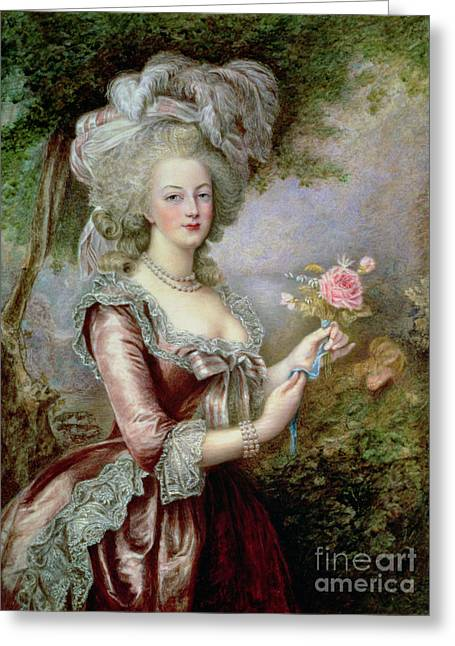 Plumed Greeting Cards - Marie Antoinette after Vigee Lebrun Greeting Card by Louise Campbell Clay