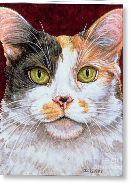 Cat Face Greeting Cards - Marigold Greeting Card by Ditz