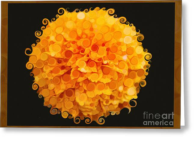 Methow Valley Greeting Cards - Marigold Magic Abstract Flower Art Greeting Card by Omaste Witkowski