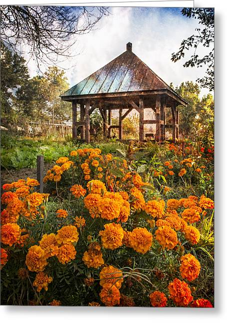 Tennessee Barn Greeting Cards - Marigolds Greeting Card by Debra and Dave Vanderlaan