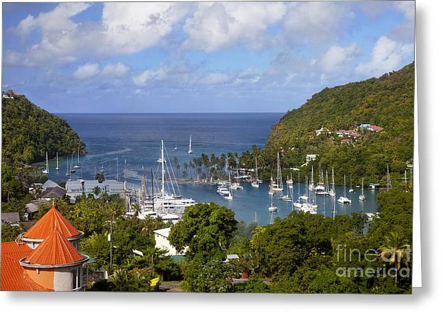 Branch Hill Greeting Cards - Marigot Bay Greeting Card by Brian Jannsen
