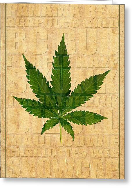 Ganja Greeting Cards - Marijuana 2 Greeting Card by Andrew Fare