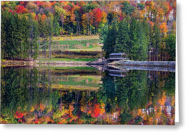 Tree Reflections In Water Greeting Cards - Marilla Bridges Trail Greeting Card by Mark Papke
