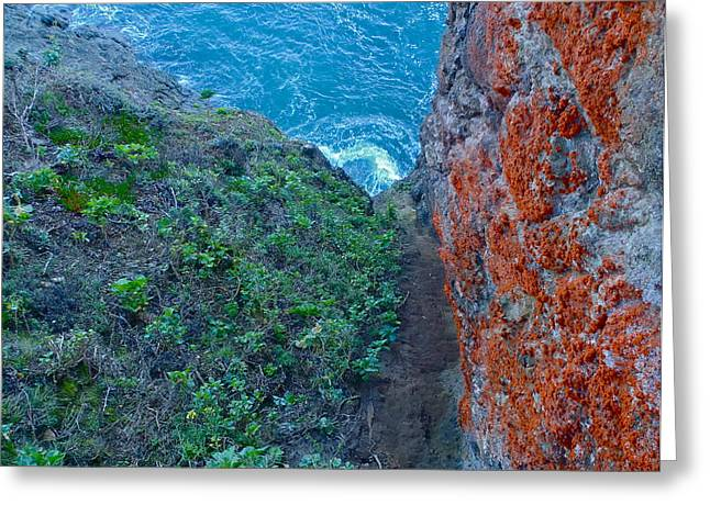Marin County Greeting Cards - Marin County cliff Greeting Card by Rob Michels