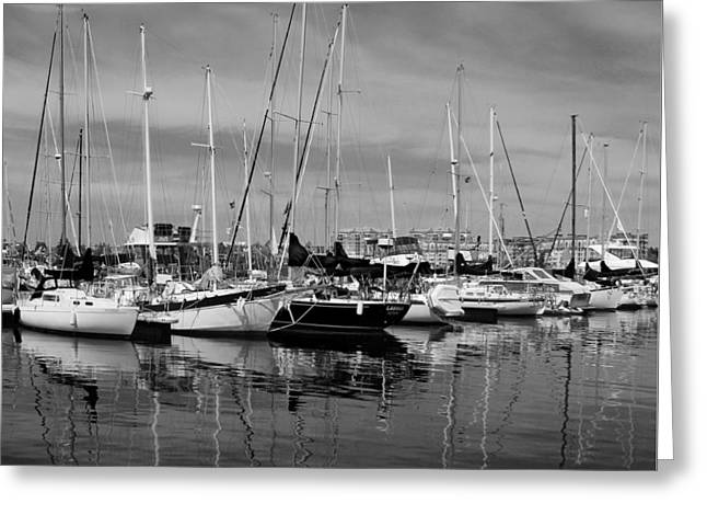 Docked Boats Greeting Cards - Marina Boats In Victoria British Columbia Black And White Greeting Card by Ben and Raisa Gertsberg