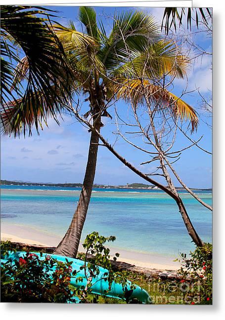 British Virgin Islands Greeting Cards - Marina Cay Beach Greeting Card by Carey Chen