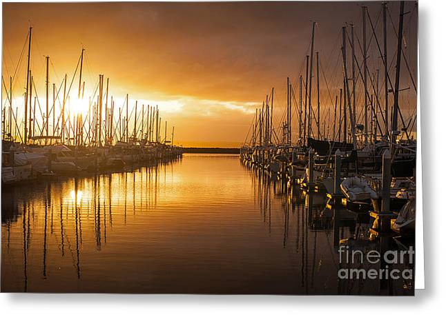 Marina Golden Sunset Greeting Card by Mike Reid