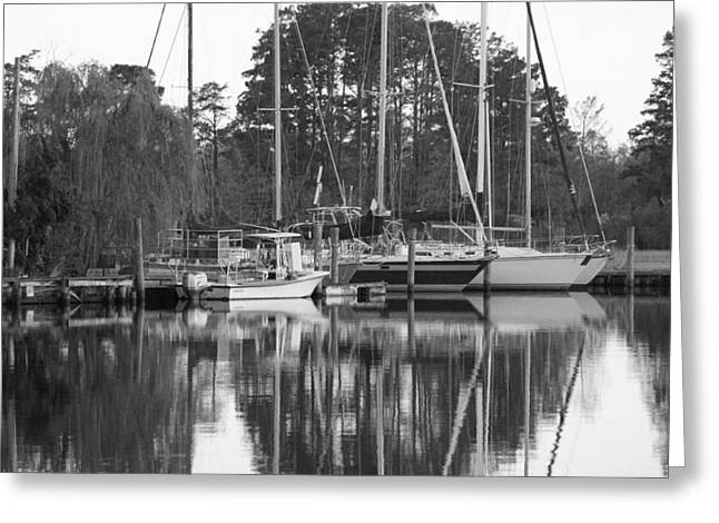 Marina In Black And White Greeting Card by Carolyn Ricks