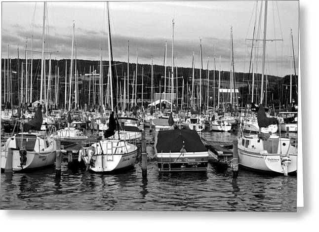 Finger Lakes Greeting Cards - Marina in Black and White Greeting Card by Frozen in Time Fine Art Photography