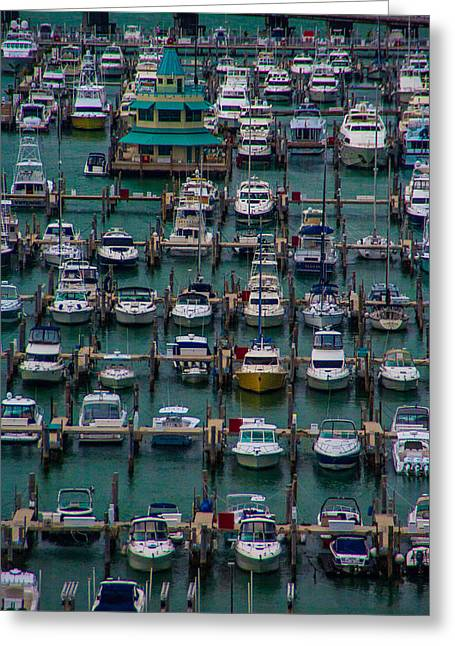 Docked Sailboats Greeting Cards - Marina Maze Miami Greeting Card by Patti Deters