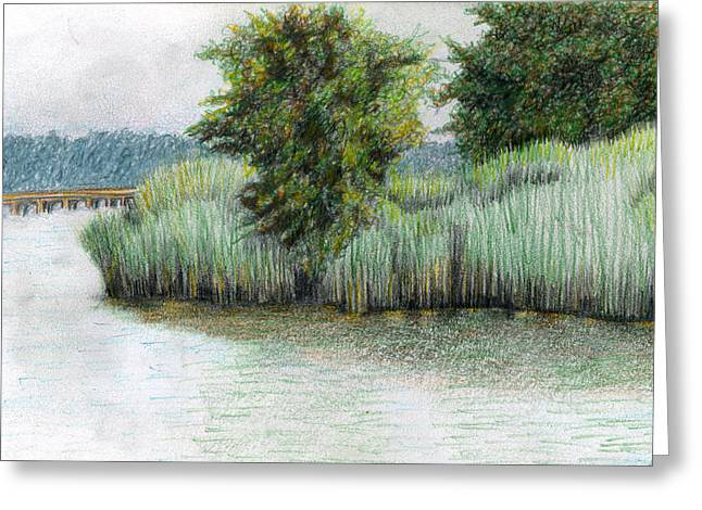 Park Scene Drawings Greeting Cards - Mariner Point Park Greeting Card by Ceilon Aspensen