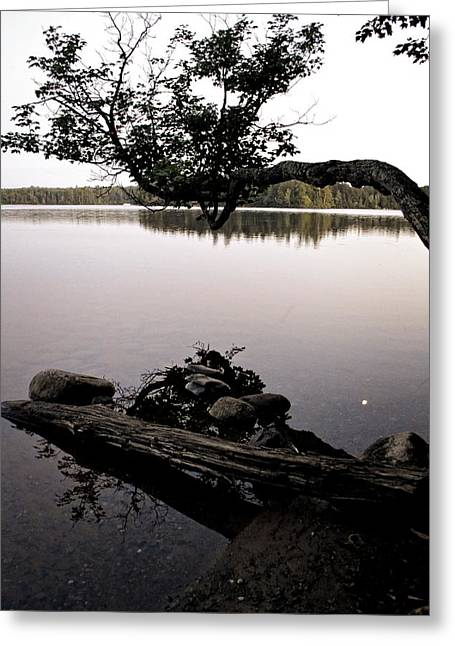 Moon Beach Greeting Cards - Marion Lake and the Moon Greeting Card by Michelle Calkins