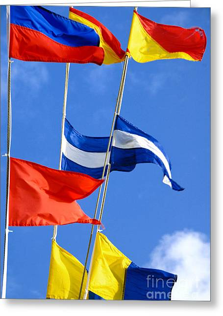 Boating Greeting Cards - Maritime Signal Flags Greeting Card by Amy Cicconi