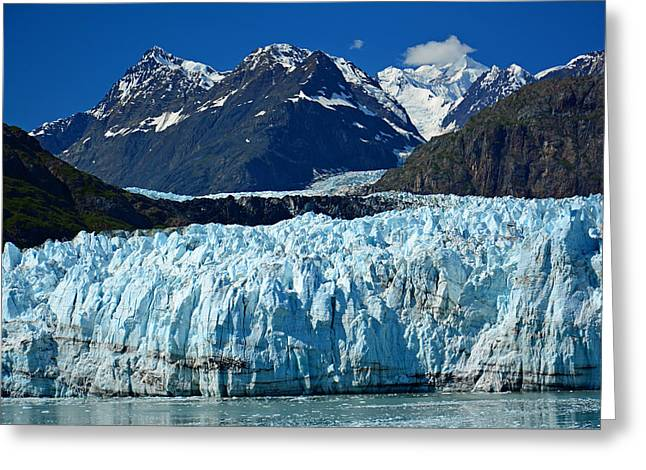 Recently Sold -  - Snow Capped Greeting Cards - Marjerie Glacier in Glacier Bay in Alaska Greeting Card by Nina Bowling