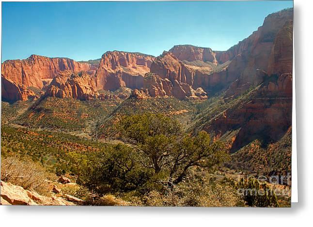 Navajo Basin Greeting Cards - Markaqunt  Mesa In Kolob Greeting Card by Robert Bales