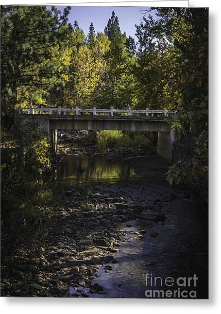 Autumn Leaf On Water Greeting Cards - Markleeville Creek Greeting Card by Mitch Shindelbower