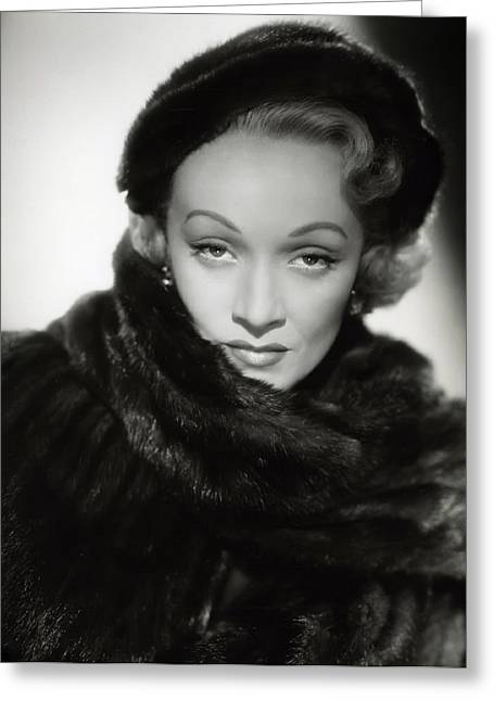 Academy Awards Oscars Greeting Cards - Marlene Dietrich Greeting Card by Daniel Hagerman