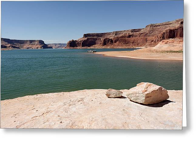 Desert Lake Greeting Cards - Marooned Greeting Card by Julie Niemela