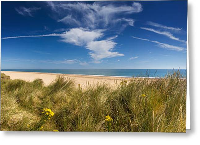 Sea Grasses On Sand Dunes Greeting Cards - Marram Grass, Dunes And Beach Greeting Card by Panoramic Images