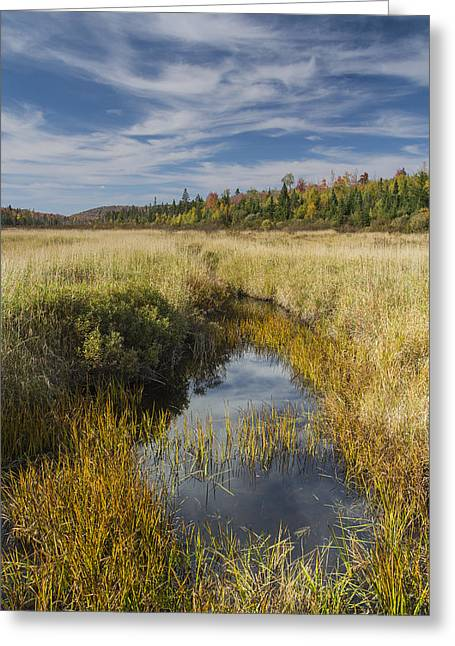 Consumer Greeting Cards - Marsh Autumn Vermont reflections sky clouds Greeting Card by Andy Gimino