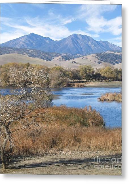 Marsh Greeting Cards - Marsh Creek October Greeting Card by Stu Shepherd