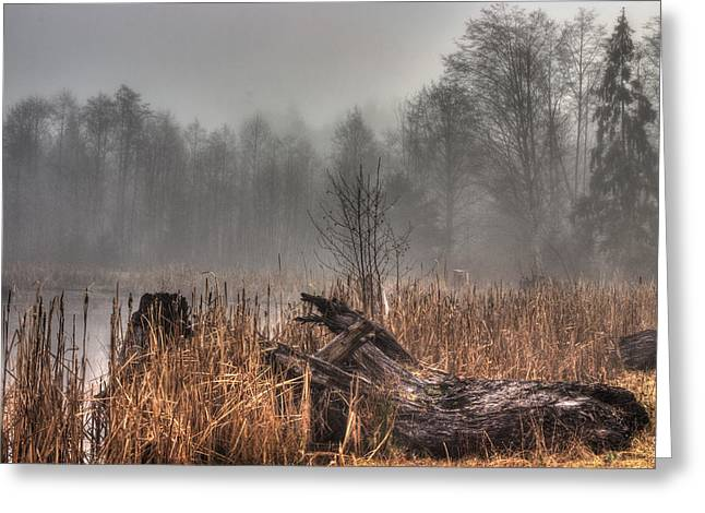 Bulrushes Greeting Cards - Marsh In Fog Greeting Card by Randy Hall