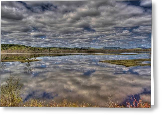 Roger Lewis Greeting Cards - Marsh Reflections Greeting Card by Roger Lewis