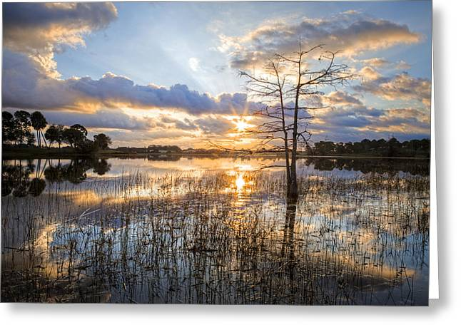 Foggy Beach Greeting Cards - Marsh Sunrise Greeting Card by Debra and Dave Vanderlaan