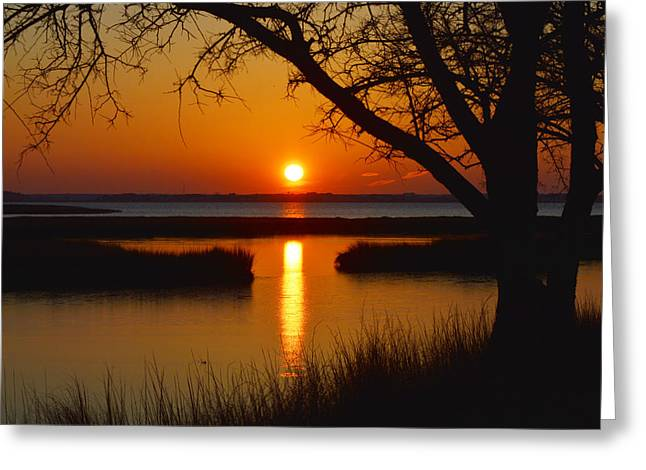 Ocaen Greeting Cards - Ocean City Sunset at Old Landing Road Greeting Card by Bill Swartwout
