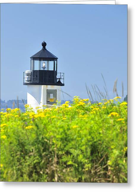 Maine Icons Greeting Cards - Marshall Point Lighthouse and field of goldenrod  Greeting Card by Marianne Campolongo