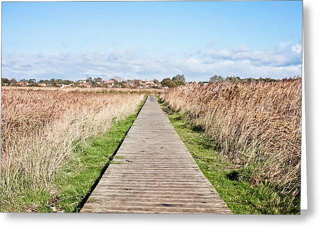 Marsh Path Greeting Cards - Marshland path Greeting Card by Tom Gowanlock