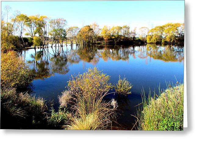 Joyce Woodhouse Greeting Cards - Marslands water ways Greeting Card by Joyce Woodhouse