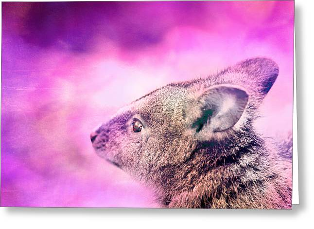 Marsupial Greeting Cards - Marsupial Greeting Card by Phill Petrovic